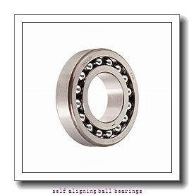 NSK 2214J  Self Aligning Ball Bearings