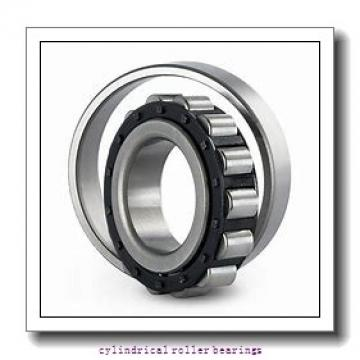 7.874 Inch | 200 Millimeter x 12.205 Inch | 310 Millimeter x 4.528 Inch | 115 Millimeter  INA SL05040-E  Cylindrical Roller Bearings
