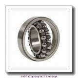 NSK 1319KJ  Self Aligning Ball Bearings