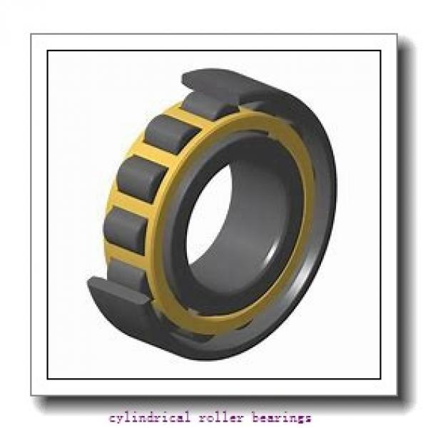 FAG NU309-E-M1A-C3  Cylindrical Roller Bearings #2 image