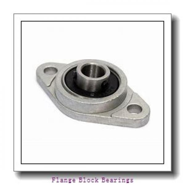 QM INDUSTRIES QVFB20V304SN  Flange Block Bearings #1 image